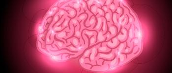origen miedos cerebro libro